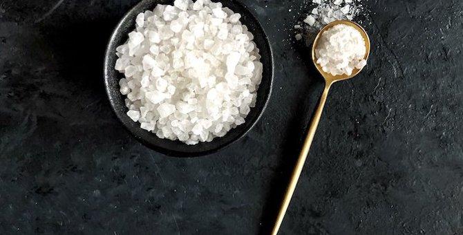 塩分摂りすぎてない?猫の適切な塩分量と過剰摂取の危険性