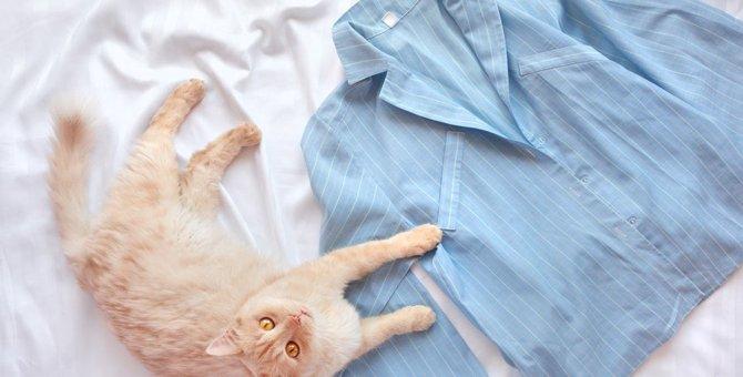 おしゃれでかわいい!猫のパジャマおすすめ商品6選