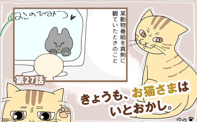 きょうも、お猫さまはいとをかし。【第27話】「無言の訴え」