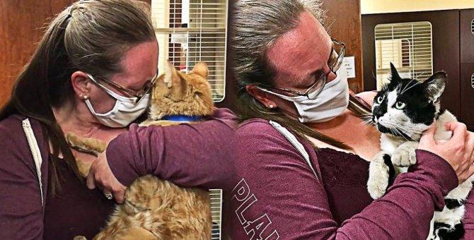 森林火災で飼い主とはぐれた猫…奇跡の再会に感動の涙