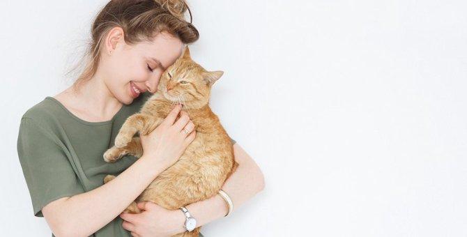 命に関わる事も…猫の生活習慣病を予防するには?
