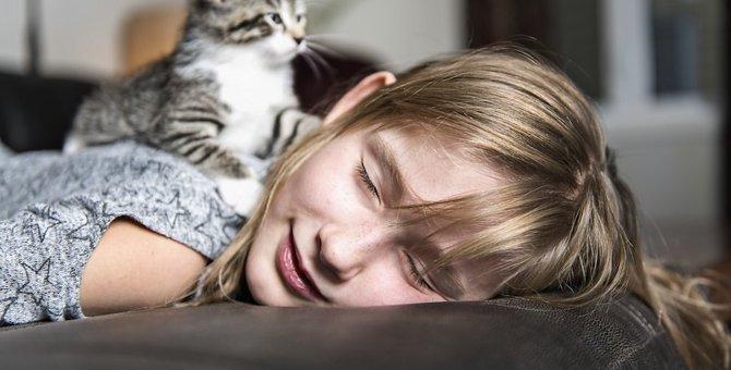 猫が飼い主の顔の上に乗るのはなぜ?6つの気持ち