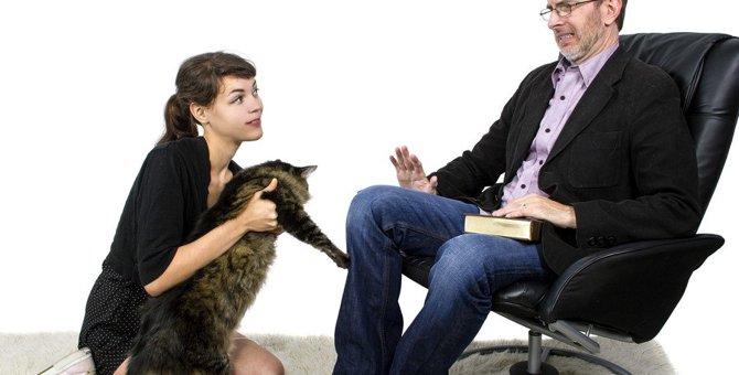 猫が苦手な人と一緒に住む時に注意したいこと5個