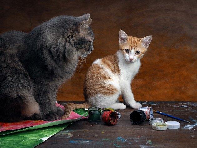 猫で有名な画家「ルイス・ウェイン」作品と心の病