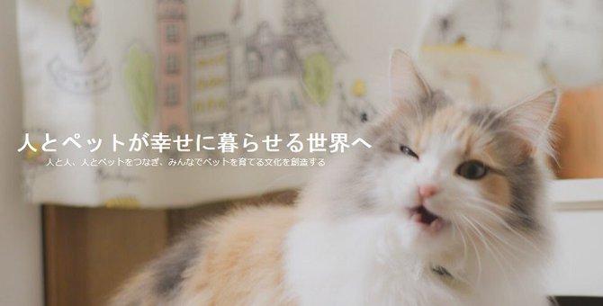 ペットシッターいらず?猫の飼い主同士をマッチングするサービス「Nyatching(ニャッチング)」が画期的!