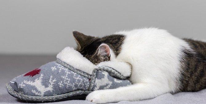 猫柄スリッパのおすすめ人気ランキングや、選び方も紹介