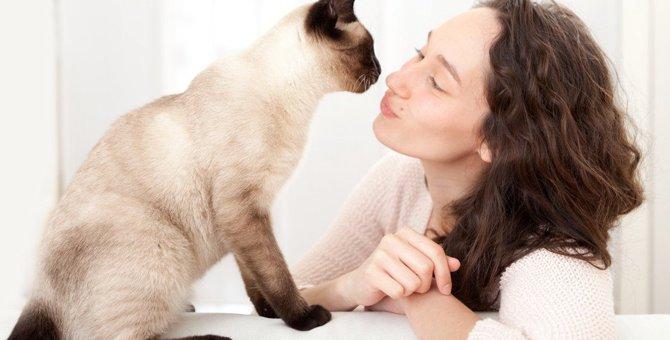 猫は口笛に反応する?寄ってくる、甘える、噛むなどの反応について