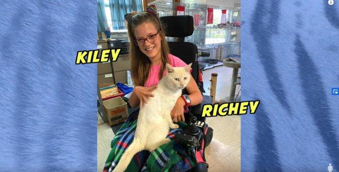 引っ越しで捨てられた白猫と車椅子に乗る少女の『パーフェクトな出会い』!