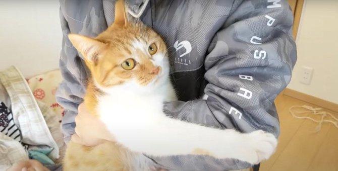 お兄ちゃんと喧嘩中の猫ちゃん、仲直りは出来るかな?