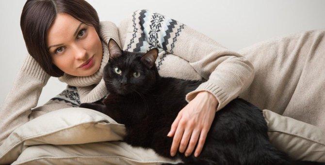 あなたの愛猫はどう?猫の性格が分かる4つの方法