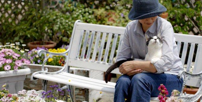 【新型コロナ】愛猫は自宅の庭に出すのもNG?感染予防対策とストレス解消
