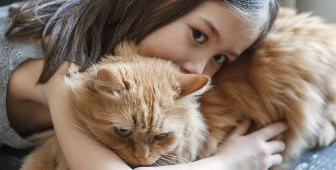 猫と人では『行動の受け取り方』が異なる