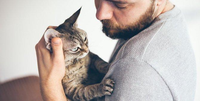 猫に『愛されていない』と感じさせる飼い主の毒親行動3つ