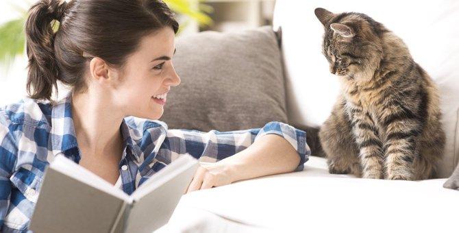 猫にとって『理想的な飼い主』になるための心構え3つ