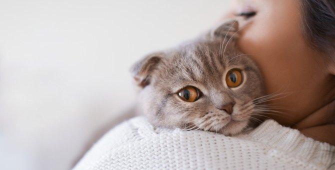人間なら顔面蒼白?猫が普通にしている『ちょっと怖いこと』5つ