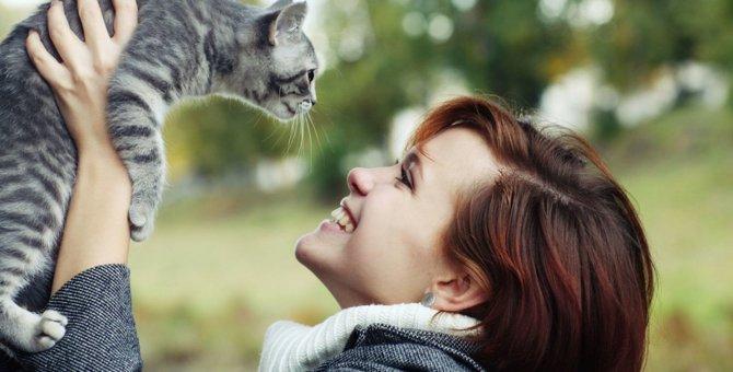 猫の飼い主がするべき周囲への配慮3つ