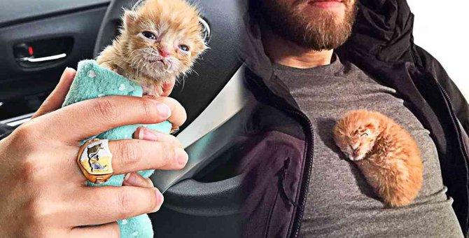 ティッシュの箱に子猫…善意の輪が幸せな未来を築く!
