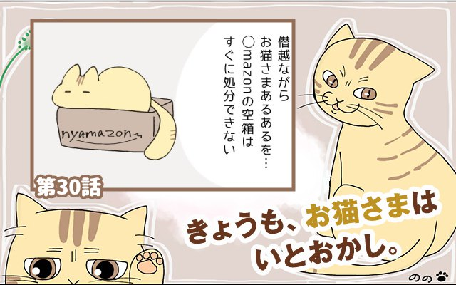 きょうも、お猫さまはいとをかし。【第30話】「お猫さまあるある」