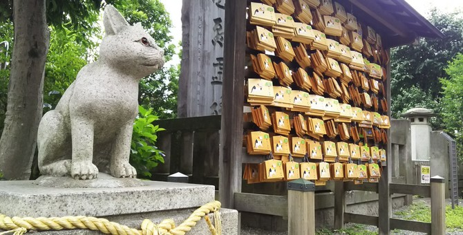 ニャンコが迷子に…猫返し神社に望みを込めて参拝してみては。
