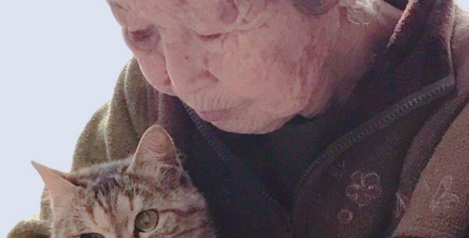猫を愛するおばあちゃんの保護猫活動が話題!チャリティーコースターで支援を