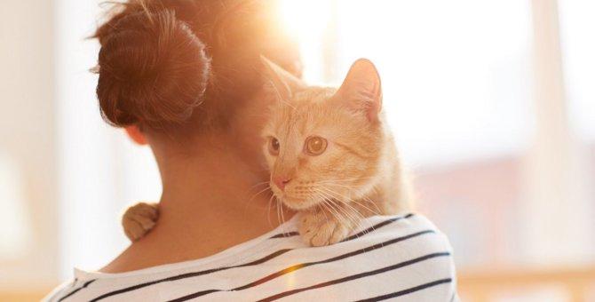 猫が死ぬ前『大切な人』だけに見せる行動3つ