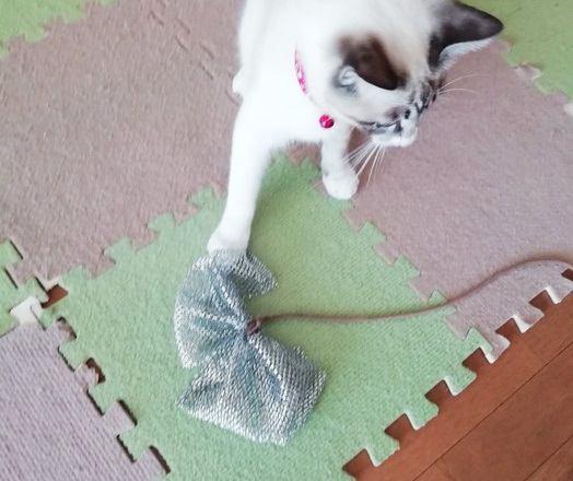 キラキラリボンで本能を刺激!手作り猫じゃらしの作り方