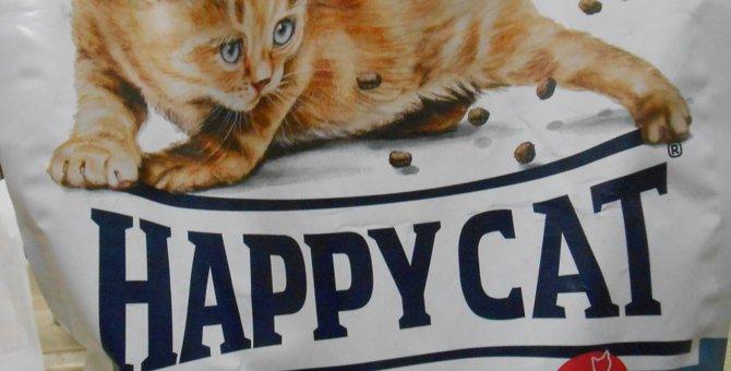 我が家のにゃんず御用達フードHAPPY CAT!安全なキャットフードの選び方も
