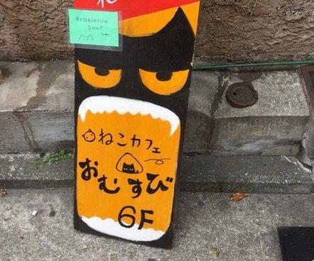居心地良し! 個性的で優しさに溢れた横浜にある保護猫カフェ「おむすび」