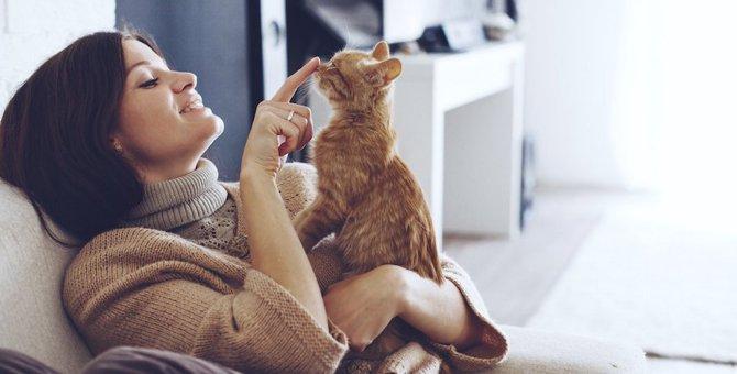 猫と暮らすと感じる6つの幸せなこと