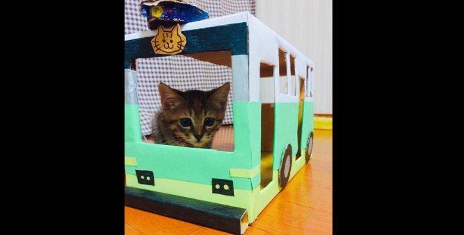 猫がドライバー!?ネコバスをダンボールで作ってみよう♪