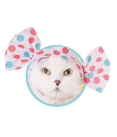 猫のガチャガチャ『ねこキャンディーちゃん』がかわいい!