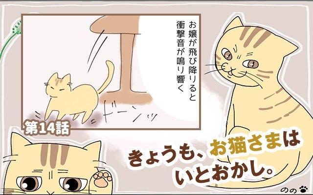 きょうも、お猫さまはいとをかし。【第14話】「思ってたのと違う」