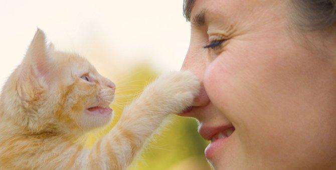 猫がソフトに『猫パンチ』してくる時の心理4つ