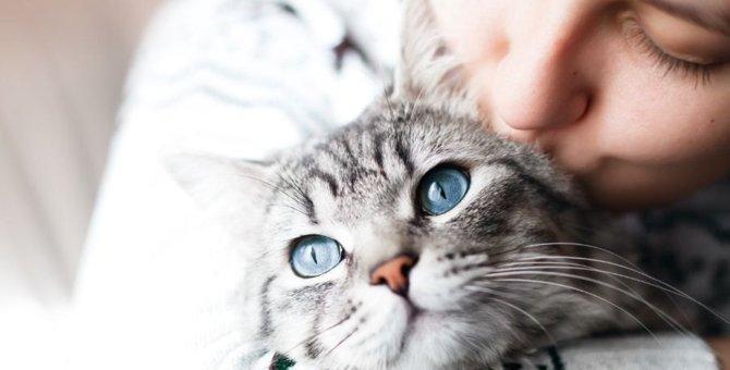 実は危険!?飼い主がよくやる『猫吸い』のリスクを解説