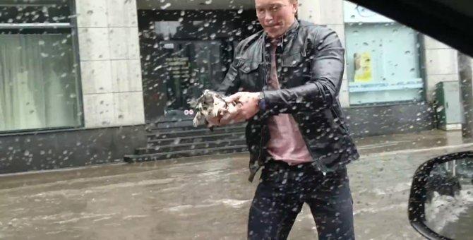 大洪水の中びしょ濡れで震える子猫…見兼ねた男性がとっさに保護!