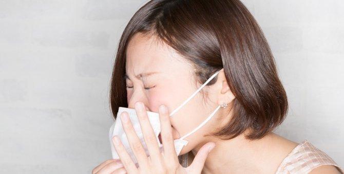 猫アレルギーは克服できる!原因や症状を押さえる対策