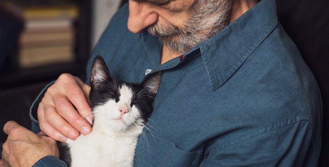 なぜ猫の感情に「悲しみ」はないと考えられているのか