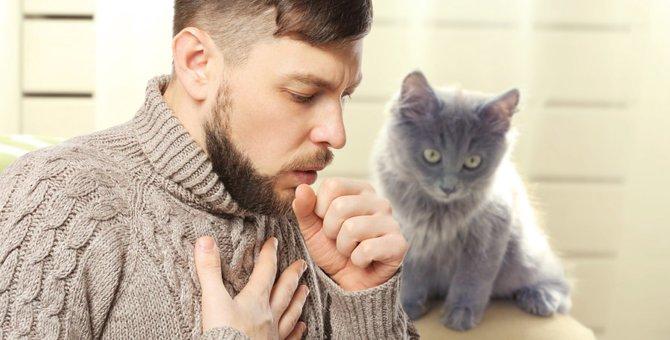 猫インフルエンザが人にうつるかもしれない!予防できる方法はある?