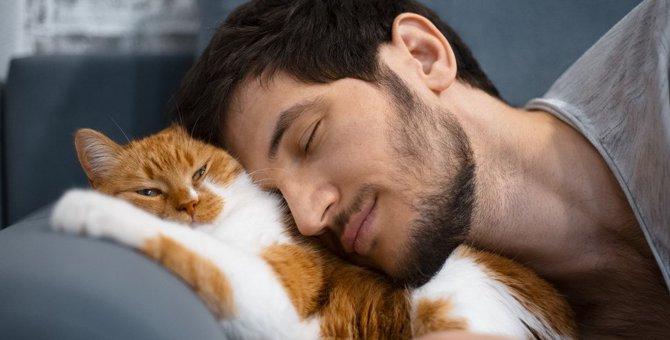 猫が『いい匂い』がする3つの理由!思わず匂いを嗅ぎたくなるポイントとは?