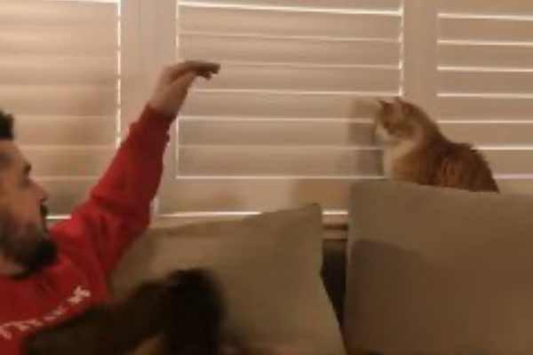 倍返しだ!猫と男の戦い…果たして勝者はどっち?