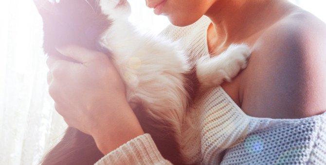 猫の死を受け止められないときの対処法3つ