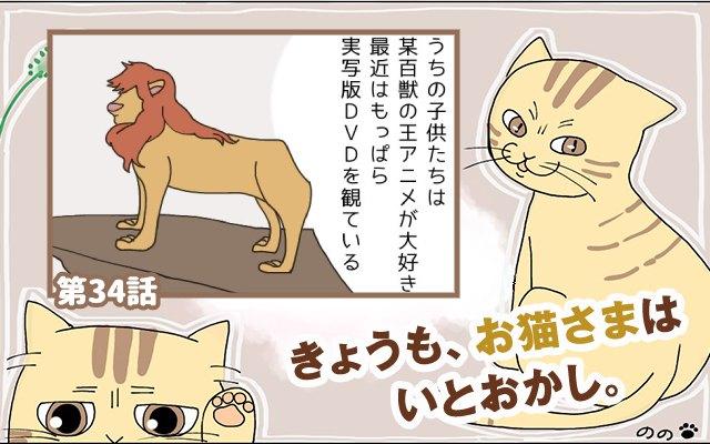きょうも、お猫さまはいとをかし。【第34話】「百獣の王」