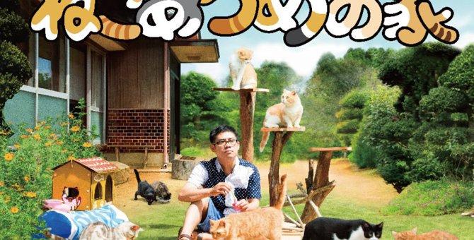 猫の映画が大豊作!おすすめ作品14選を解説