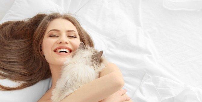 猫がスプレーをする意味とその対策方法