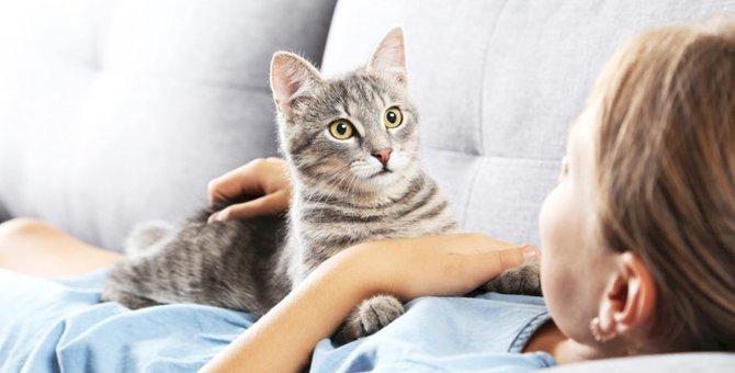 猫の鳴き声の種類と気持ちについて