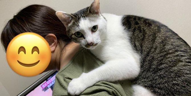 猫が人間に『好影響』を与えること5つ