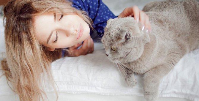 猫ウンザリ…飼い主の余計なお世話行動5つ