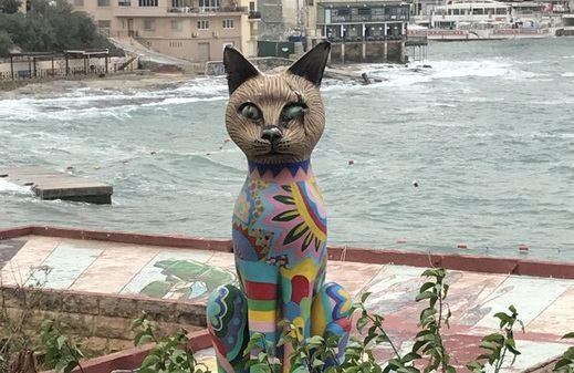 猫の楽園マルタ島をリポート!ネコと出会えるおすすめのスポットをご紹介