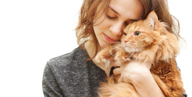 猫と生活を楽しむ9つのポイント