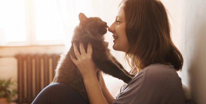 猫は天邪鬼なの?無視をすると寄ってくる4つの心理